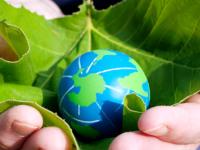 Educação financeira e ambiental: as chaves para um futuro melhor