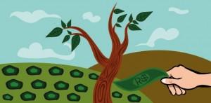 Entenda o que são as cooperativas de crédito, como elas funcionam e avalie se são vantajosas para você.
